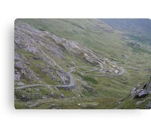 Road To Healy Pass Canvas Print