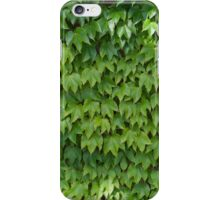 Ivy leaves iPhone Case/Skin