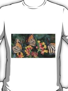 Butterfly collects nectar from a flower  T-Shirt