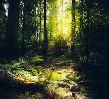Down the dark ravine by HappyMelvin