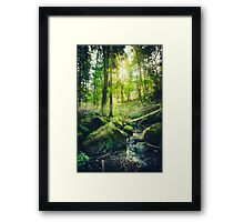 Down the dark ravine II Framed Print