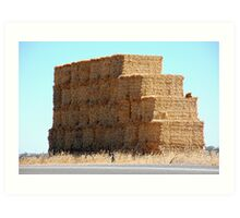 Weetbix Stack, Clare Valley, S.A Art Print