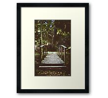 Bridge over troubled waters Framed Print