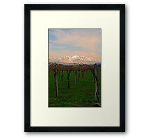 Fresh Vines Framed Print