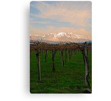 Fresh Vines Canvas Print