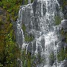 Stoney Creek Falls by Derek Kentwell