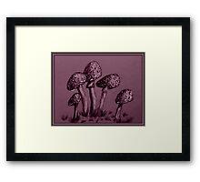 Tiny Mushrooms ...  Pencil Sketch Framed Print