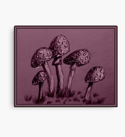 Tiny Mushrooms ...  Pencil Sketch Canvas Print