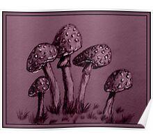 Tiny Mushrooms ...  Pencil Sketch Poster