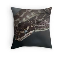 Morelia Carinata Throw Pillow