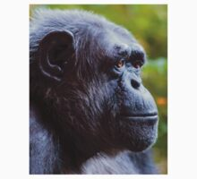 Chimpanzee - deep in thought! Kids Clothes