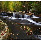 Autumn Little Stoney SW Virginia  by ThomasRBiggs