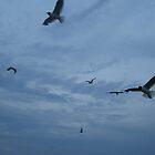Flying high fishermen by JILLIAN  POSSEHL