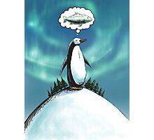 Penguin christmas wish Photographic Print