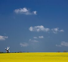 Windmill and rape field by jephoto