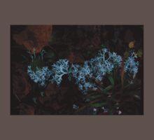 0097 - HDR Panorama - Lichen 3 Baby Tee