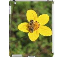 Honey Bee on Yellow Flower iPad Case/Skin