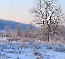Wintery Morning by rasp35