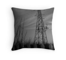 Pyles of fence Throw Pillow