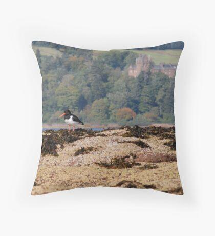 Brodick Birds Throw Pillow