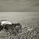 Botswana Bedtime by David  MacCallum-Price