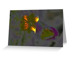Artistic Pansy Greeting Card
