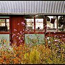 Old tram in a Port Fairy garden  by Roz McQuillan