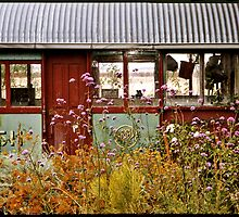 Old tram in a Port Fairy garden  by Roz McQuillan