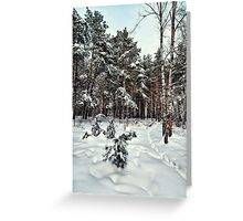Walking in a winter park Greeting Card