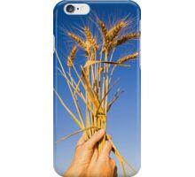 Ripe wheat stalks on a blue sky background  iPhone Case/Skin
