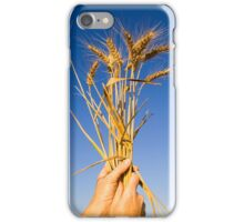Ripe wheat stalks on a blue sky background  iPhone Case/Skin