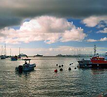 St. Barts Harbor by Stevej46