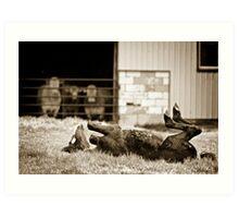 dumb horse Art Print