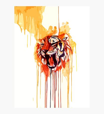 Roar I Photographic Print