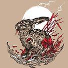 Hare by Squishysquid