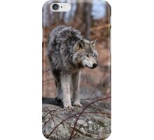 Timber Wolves on Rocks iPhone Case/Skin