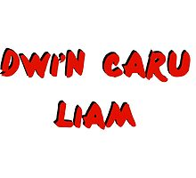 Dwi'n Caru OTRA design LP by ollysdirection