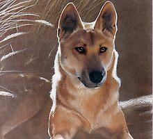Dingo by Heidi Schwandt Garner