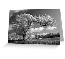 A Tree Blows in the Wind Greeting Card
