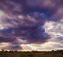 Desert Sky by Aaron Walker