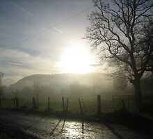 First sun of the day by crabbitcow