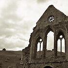 The Abbey by David  MacCallum-Price