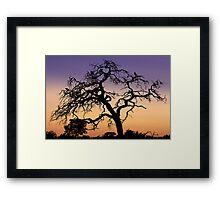 Vulture's Lair Framed Print
