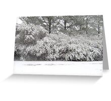 Alabamas first snow in 10 years Greeting Card