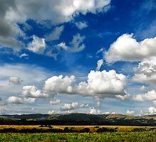 Manawatu Clouds by Peter Kurdulija
