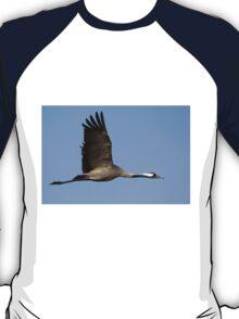 Common crane (Grus grus) also known as the Eurasian Crane T-Shirt