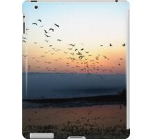Common crane (Grus grus) also known as the Eurasian Crane iPad Case/Skin