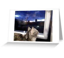 Star-gazing? Greeting Card