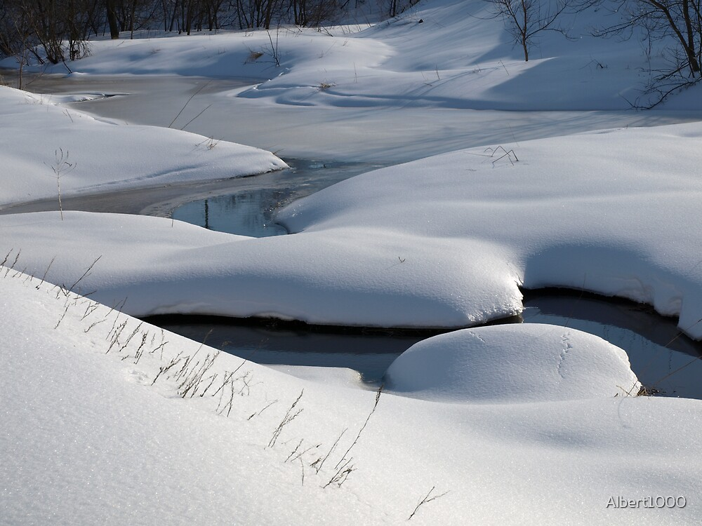 NC  Winter wonderland #2 by Albert1000