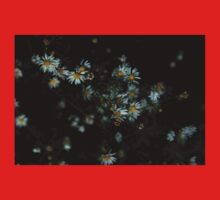 0133 - HDR Panorama - Daisies Baby Tee